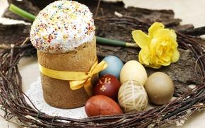 Wallpaper Easter, bow, cake, Verba, Narcissus, eggs