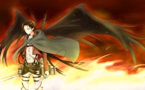 Picture anime, art, guy, Shingeki no Kyojin, Attack On Titan, Levi