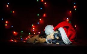 Picture dog, New Year, Christmas, garland, Christmas, dog, 2018, Merry Christmas, Xmas, funny, cute, decoration, santa …