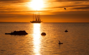 Picture sea, sailboat, the evening