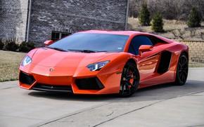 Picture wheels, lamborghini, black, orange, aventador