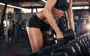 Picture female, fitness, gym, sportswear, Weight training