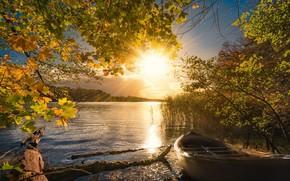 Picture autumn, light, lake, boat, morning