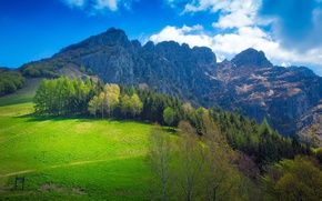 Picture forest, the sky, grass, the sun, clouds, trees, mountains, rocks, meadow, Italy