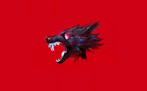 Picture wolf, mouth, fangs
