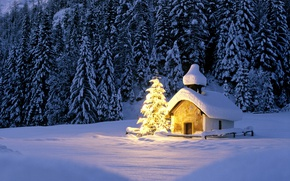 Wallpaper winter, forest, light, snow, lights, ate, Christmas, Church, New year, house, tree, garland
