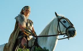 Picture cinema, sword, Wonder Woman, armor, movie, horse, queen, film, warrior, DC Comics, strong, gauntlet, Connie …