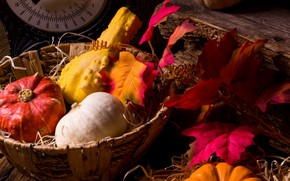 Picture leaves, basket, pumpkin, the gifts of autumn