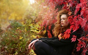 Picture autumn, leaves, girl, branches, nature, red, coat, curls