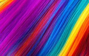 Picture hair, rainbow, colors, colorful, rainbow, texture, hair