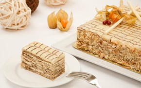 Picture cake, cream, physalis