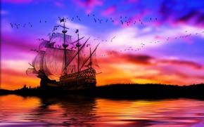 Picture sea, the sky, birds, ship, sails, calm