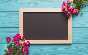 Picture Background, Buds, Pink, Roses, Board