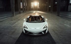 Picture McLaren, front view, 2018, Spider, Novitec, 570S