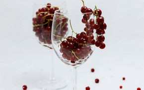Picture glass, berries, glass, dishes, still life, currants, glass