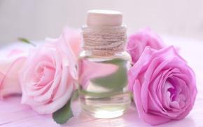 Picture perfume, petals, rose, wood, pink, petals, pink roses, spa, oil