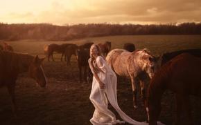 Picture girl, horse, the herd, Aleah Michele, Seek and return