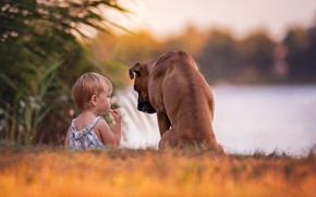 Picture dog, girl, friends, baby, bokeh, boxer