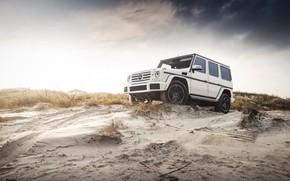 Picture Mercedes, Sky, Coast, White, Sand, W463, G-class