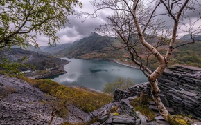Picture trees, mountains, nature, lake, stones, Wales