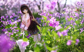Picture flowers, umbrella, toy, doll