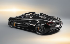 Wallpaper McLaren, rear view, 2018, Spider, Design Edition, 570S