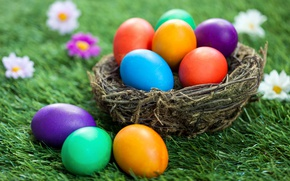Picture grass, flowers, basket, Easter, flowers, spring, Easter, eggs, decoration, Happy, the painted eggs