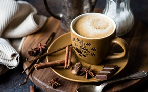 Picture coffee, chocolate, Cup, cinnamon, vanilla, star anise
