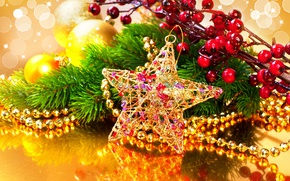Picture decoration, branches, reflection, berries, star, beads