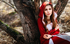 Picture forest, look, hood, in red, Lisa Swallow