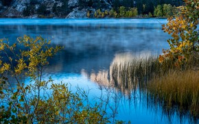 Picture forest, leaves, trees, mountains, branches, lake, the reeds, stones, CA, USA, bokeh, June Lake
