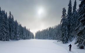 Picture snow, sport, skier