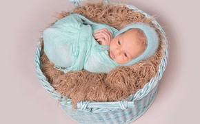 Picture boy, baby, fur, cocoon, basket, cap, baby