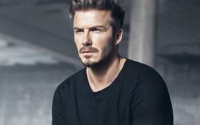 Picture look, photo, male, David Beckham, David Beckham (2018)