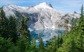 Picture greens, forest, the sky, the sun, snow, trees, mountains, lake, rocks, USA, Mount Rainier National ...