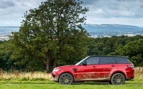 Picture field, forest, the sky, grass, clouds, trees, dirt, SUV, Land Rover, shrub, black and red, …