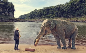 Picture people, elephant, saxophone