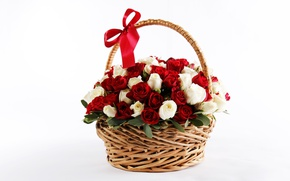 Picture basket, roses, red, bow, Rose, beautiful, bow, lovely, basket