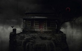 Picture tree, ladder, Raven, night, House