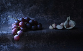 Picture grapes, bunch, still life, garlic