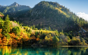 Wallpaper autumn, forest, trees, mountains, lake, China, Sunny, colorful, reserve, Jiuzhaigou, Jiuzhaigou