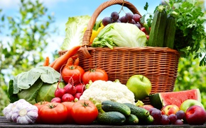 Picture basket, watermelon, grapes, vegetables, tomatoes, peach, cabbage, grape, peach, tomatoes, basket, watermelon, vegetables, cabbage