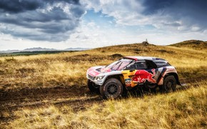 Picture Auto, Sport, Machine, Speed, Race, Peugeot, Red Bull, Rally, SUV, Rally, Sport, The roads, 100, …