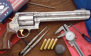 Picture weapons, revolver, weapon, engraving, custom, Smith & Wesson, 500 S&W Magnum, engraving, revoler
