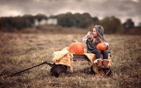 Picture field, girl, pumpkin, truck