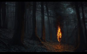 Picture torch, ashen falls, fire woods, nitgh