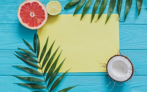 Picture palm leaves, coconut, background, grapefruit