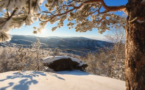 Picture winter, snow, trees, mountains, view, panorama