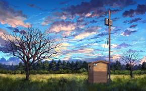Picture landscape, nature, art