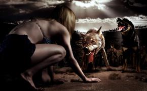 Picture cinema, girl, horror, survivor, movie, fear, film, Sara, Taryn Manning, bulldog, pack, siberian husky, terror, ...